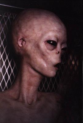 Как выглядит инопланетяне
